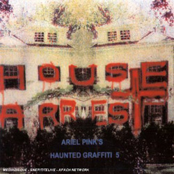 house arrest ariel pink's haunted graffiti