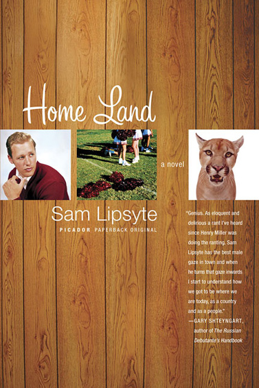 home land sam lipsyte